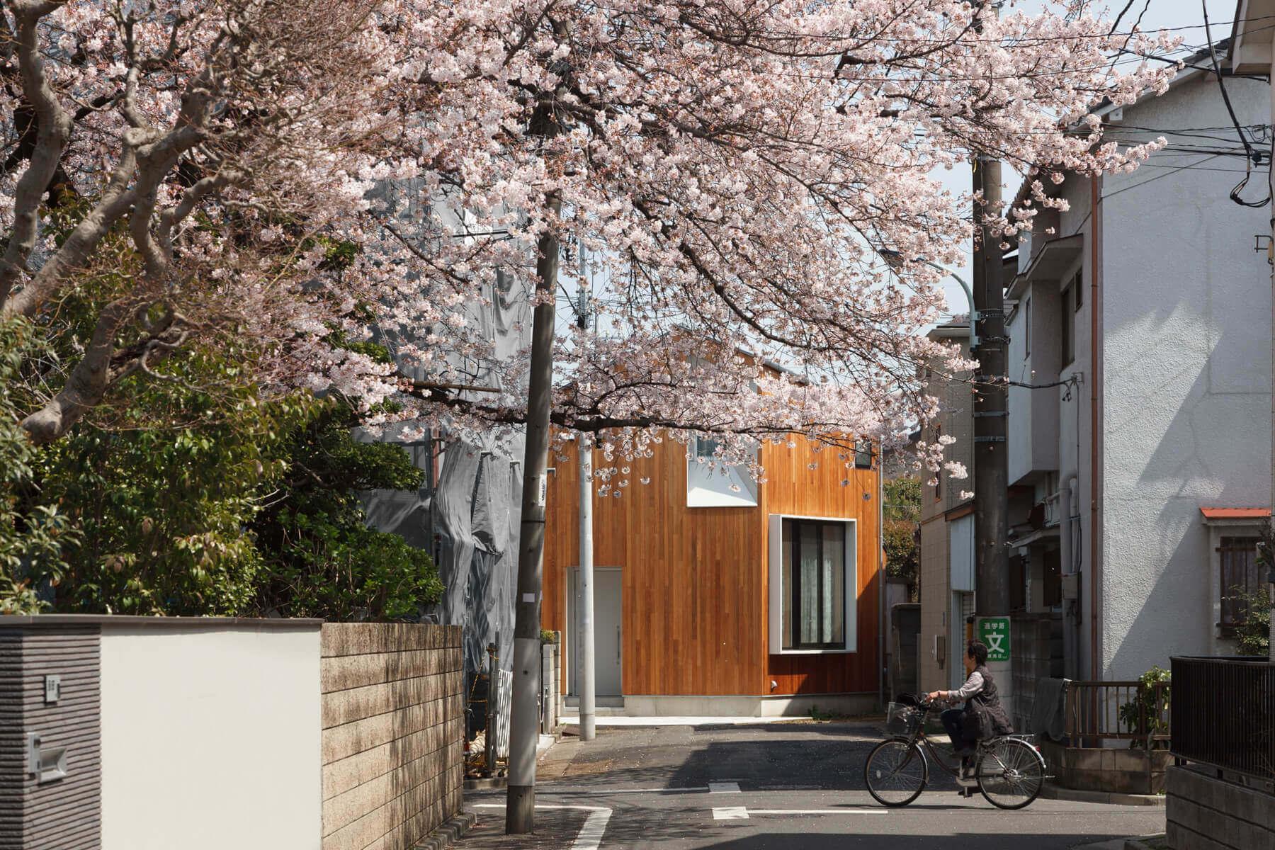 桜満開時の石神井U邸外観