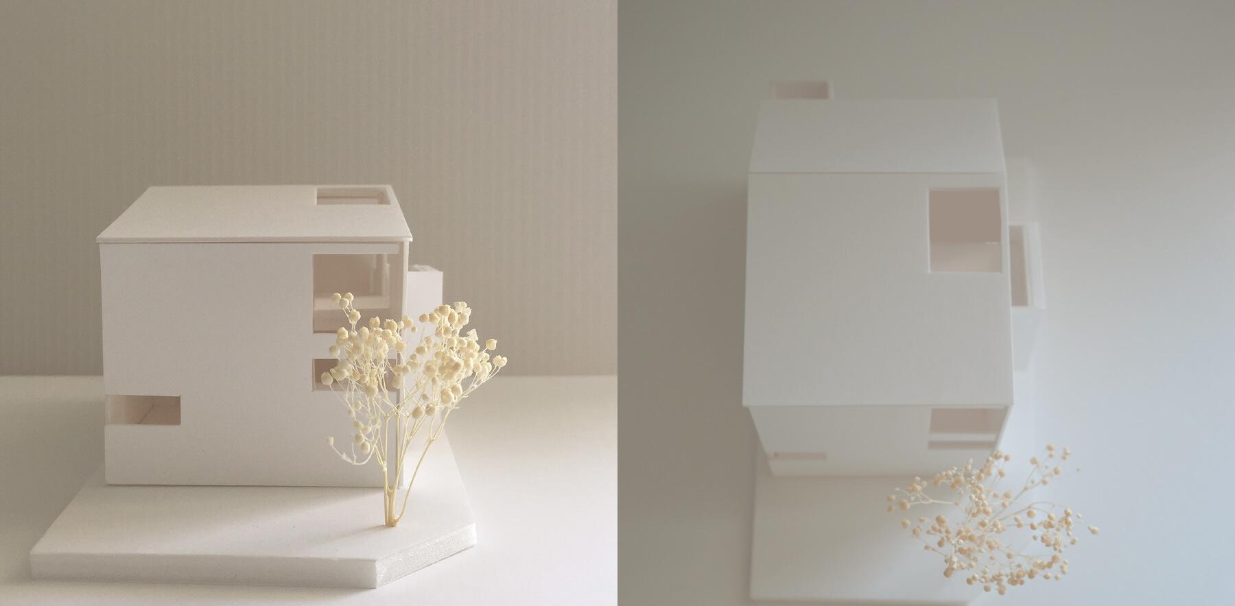 狛江S邸 模型写真